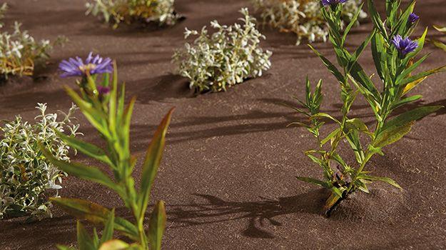 Géotextile écologique anti-mauvaises herbes