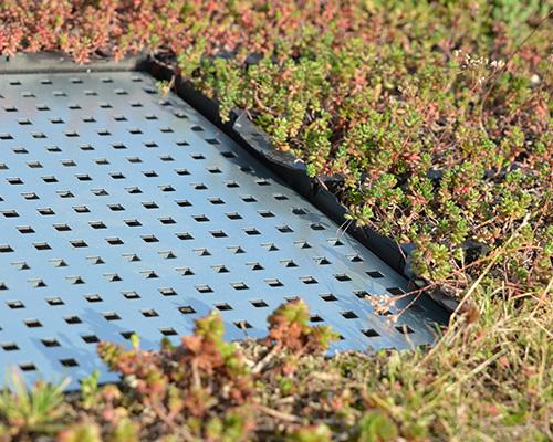 HydraLook avaloir toiture verte