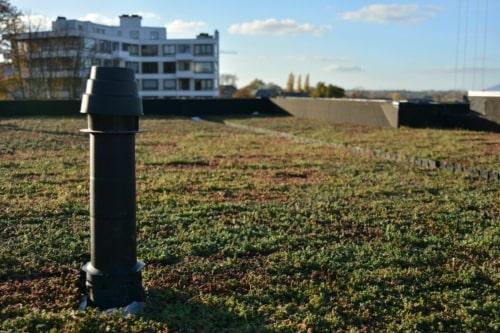 Sedum Stockdrain bacs en plastiques déjà prêt pour toiture verte