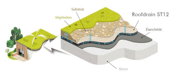 RoofDrain : drainage horizontal des toitures vertes extensives et intensives