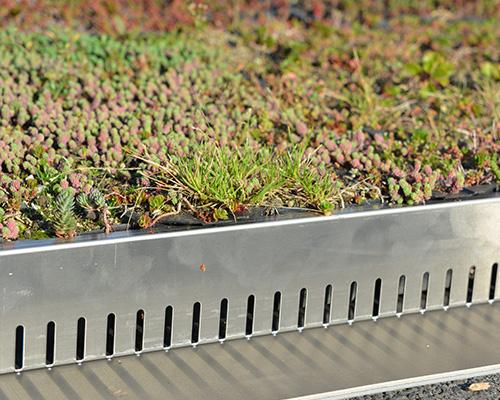 SilexTop profil en L pour toiture verte