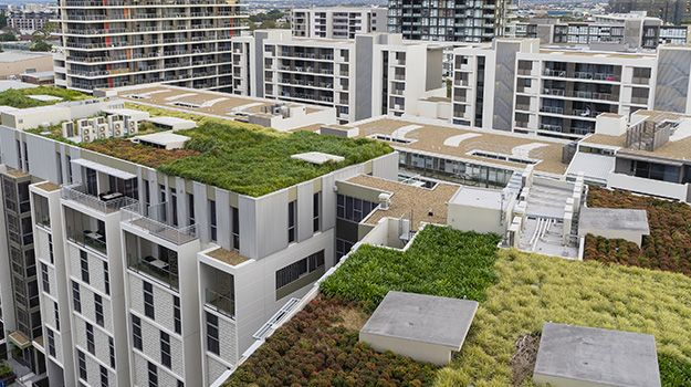 membranes de drainage pour toitures vertes